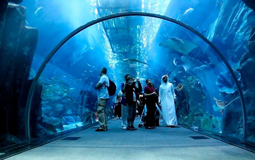Dubai Mall Aquarium - Nasma Luxury Stays