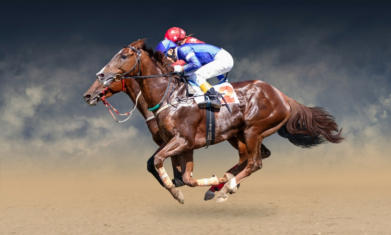 THE NASMA GUIDE TO… DUBAI WORLD CUP